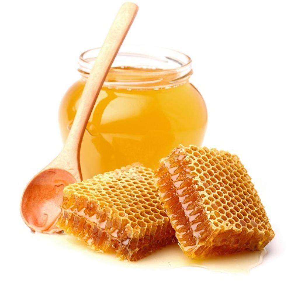 مناحل العسل الطبيعي في بورصة