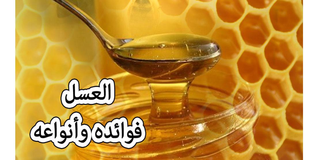 العسل على الريق يفتح الشهيه