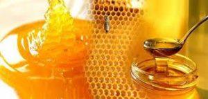 فوائد العسل للتسمين