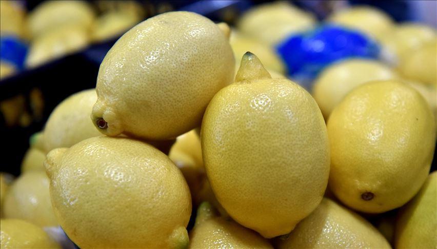 اسعار الليمون في تركيا