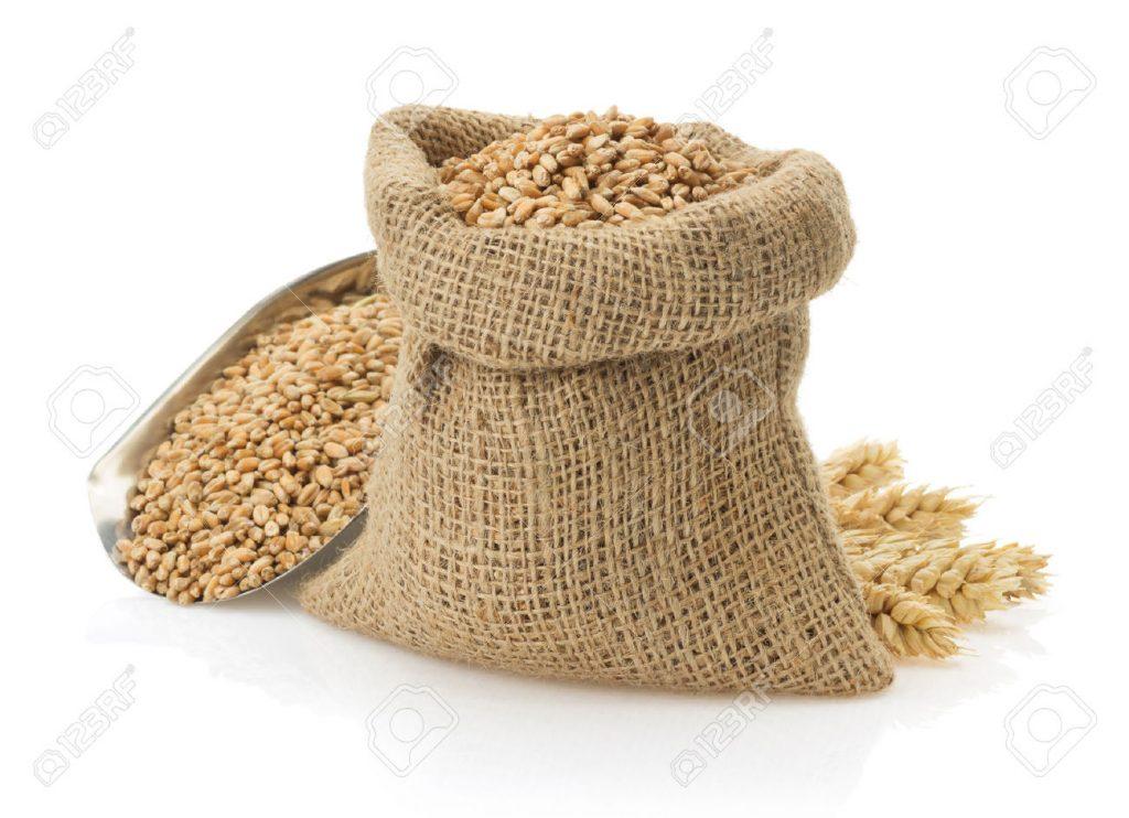 دراسة جدوى مشروع تعبئة وتغليف الحبوب