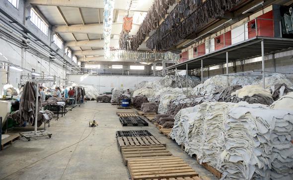 مصانع الجلود في تركيا