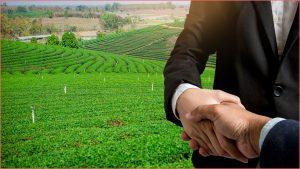 الاستثمار الزراعي في تركيا