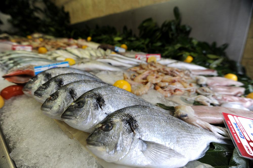 تجارة السمك في تركيا