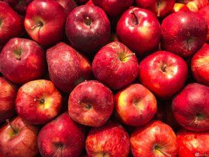 تصدير التفاح من تركيا