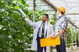 دعم المشاريع الزراعية في تركيا
