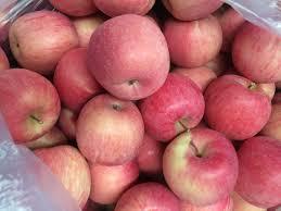 مصانع تفاح في تركيا