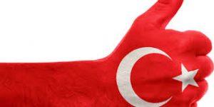 أنواع الشركات في تركيا