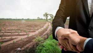 اسعار الاراضي الزراعية في تركيا