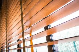 فوائد شتر الخشب الصلب