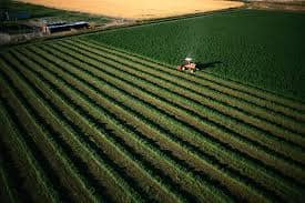 قانون الاستثمار الزراعيفي تركياللأجانب
